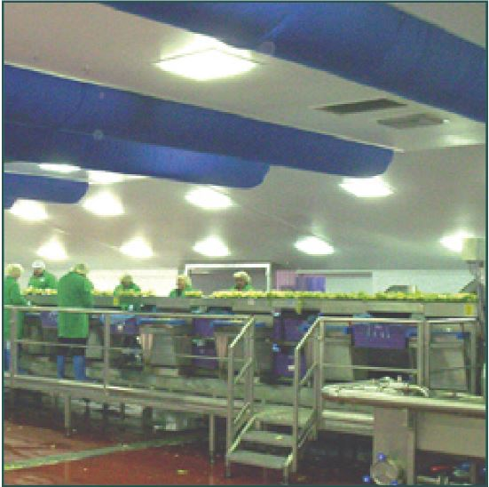hygienic food production facility