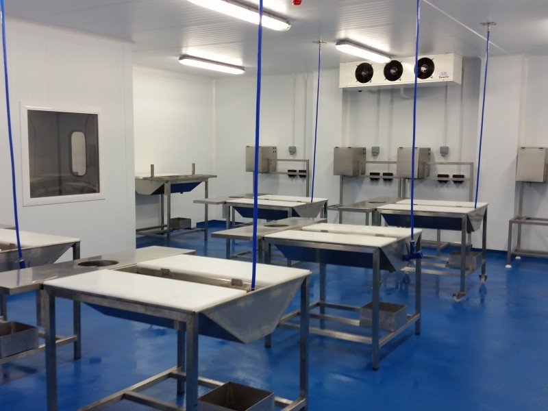 Fish processing and preparation area