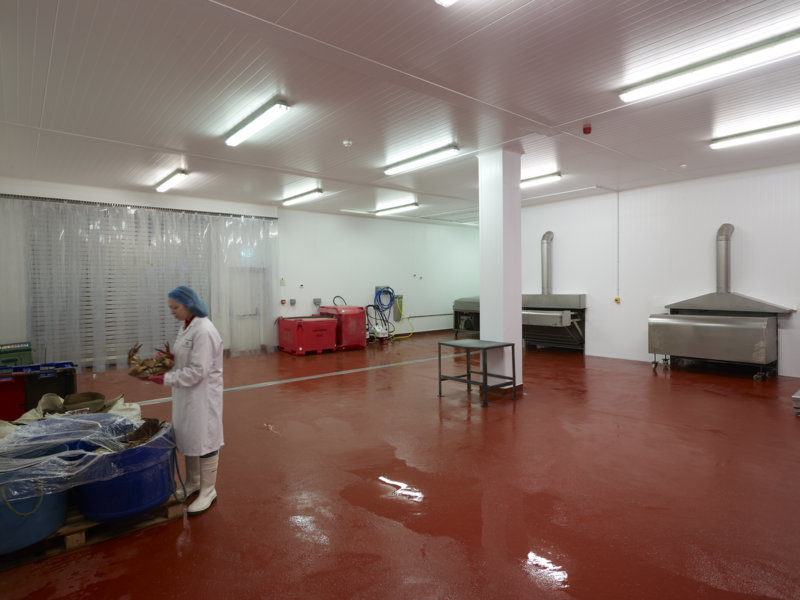 New shellfish processing facility