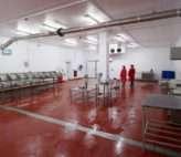 Food safe panels for shellfish processing facility