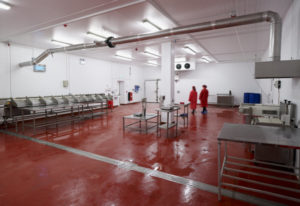 Food safe panels for shellfish processing facility