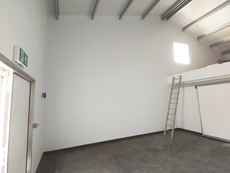 White wall panelling for cheese production extension